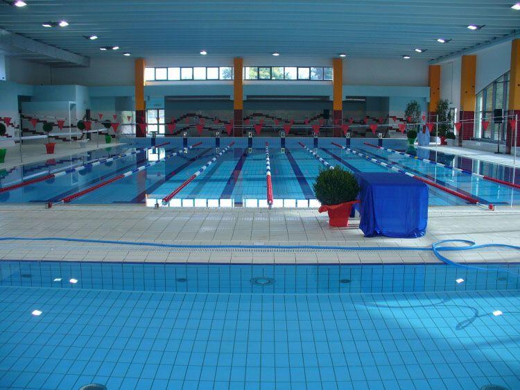 Delfino Sport s.r.l.